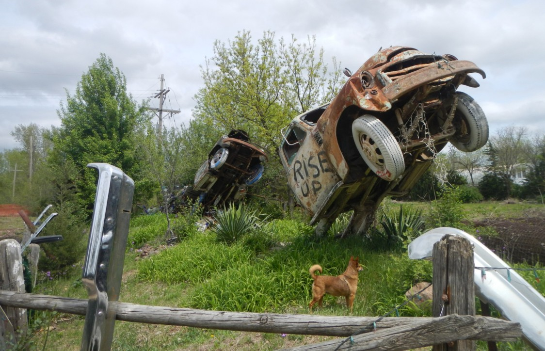Lessman's dog, Foxy, stands triumphantly among his bumper crop and truck monoliths.