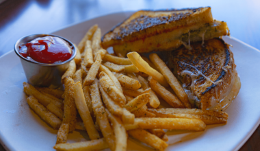 Ale Asylum's Grilled Cheese